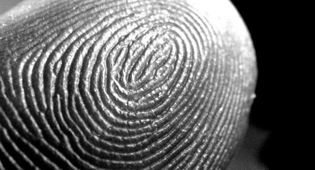 fingerprint identification - Parfu kaptanband co